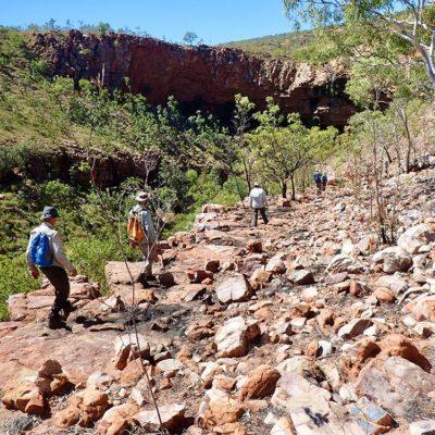 bushwalking carr boyd north day walks