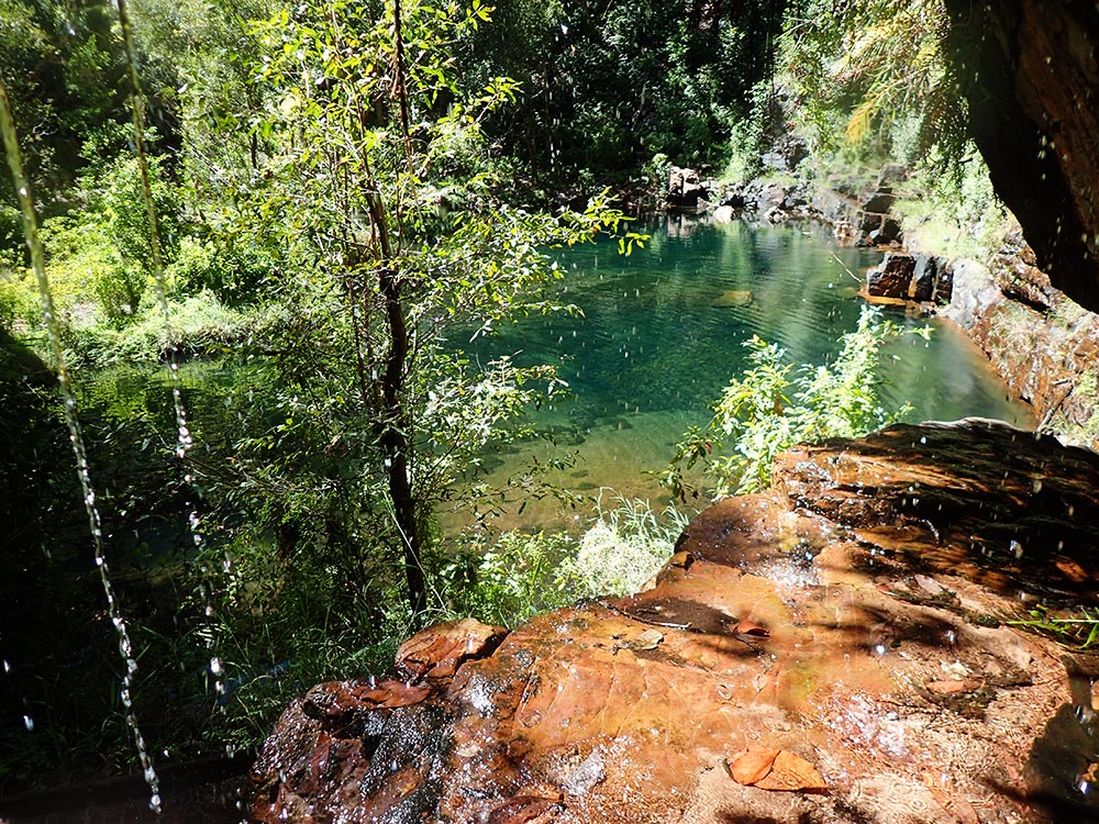 bushwalking carr boyd north swim