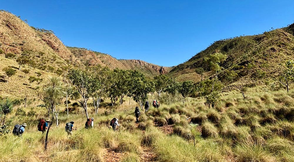 bushwalking carr boyd south spinifex country