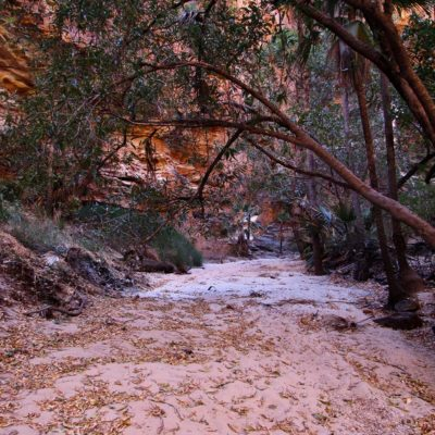 bushwalking fifth gorge