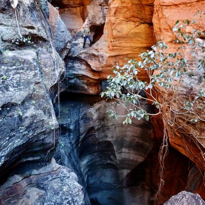bushwalking third gorge